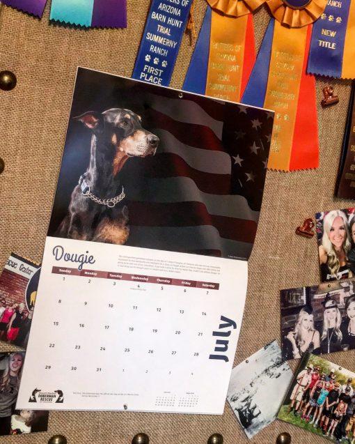 2018 Doberman Calendar July