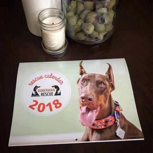 2018 Doberman Calendar